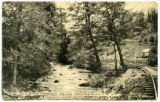 Allen's Creek Near Waynesville,...
